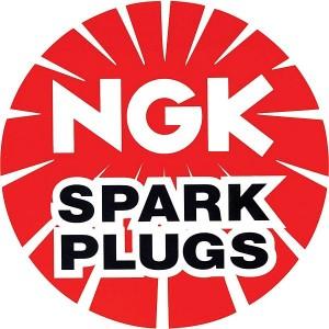 NGK B105EGV Spark Plug