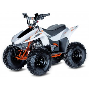 Kayo Fox 70cc Kids ATV Quad